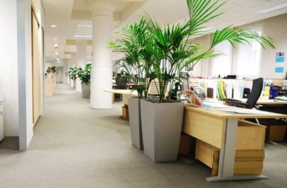 Calidad del aire en las oficinas